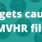 What gets caught in an MVHR Filter